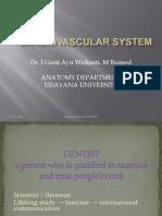 Anatomi 3 - Cardiovascular System