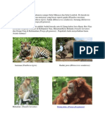 Fauna tipe Asiatis.docx