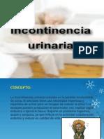 diapositivas de eincontinencia terminadas.pptx