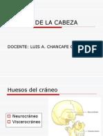 HUESOS DE LA CABEZA.ppt