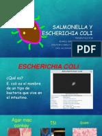 exposicion salmonella- eschericha.pptx