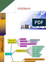 enzimas 3.ppt