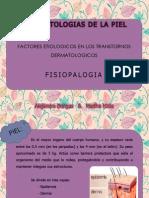 factores etiologicos de transtornos dermatologicos.ppsx