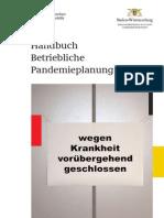 Handbuch Betriebliche Pandemieplanung