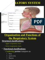 Human Respiratory System and Mechanics.ppt