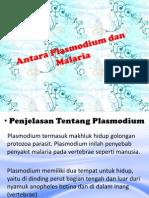 Plasmodium & Malaria
