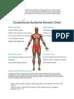 Cauda equina syndrome adalah suatu keadaan neurolo.doc
