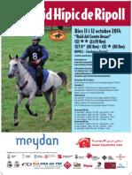 POSTER RAID RIPOLL 2014.pdf