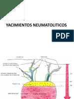 YACIMIENTOS NEUMATOLITICOS.pdf