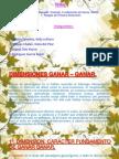 DIMENSIONES GANAR – GANAR.pptx