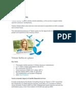 Finansijski Podaci TELENOR SRBIJA, Misija, Smernice i Strategija Firme