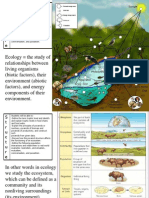 topic 2 1 the ecosystem structure