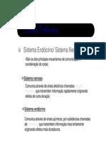 SISTEMA ENDÓCRINO.pdf