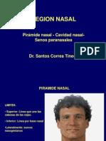 REGION NASAL- CORREA.ppt