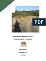 Emil Dumea Santiago 2013 - ED.pdf