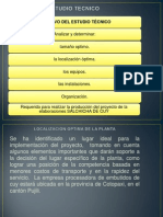 PRESENTACION_TESIS_salchicha.ppt