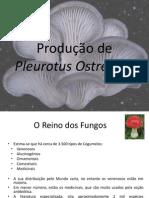 Ponencia P.Cheira.pdf