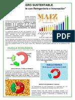 AGRO SUSTENTABLE Solo es posible con Reingeniería e Innovación.pdf