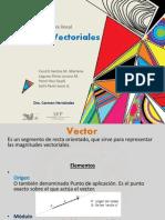 Espacios Vectoriales nuevo!!!!!.pptx
