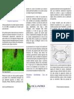 JARDINERIA_DEL_ACUARIO_1parte.pdf