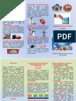 TRIPTICO-BIOSEGURIDAD.docx
