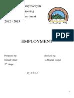 3-Employment.docx
