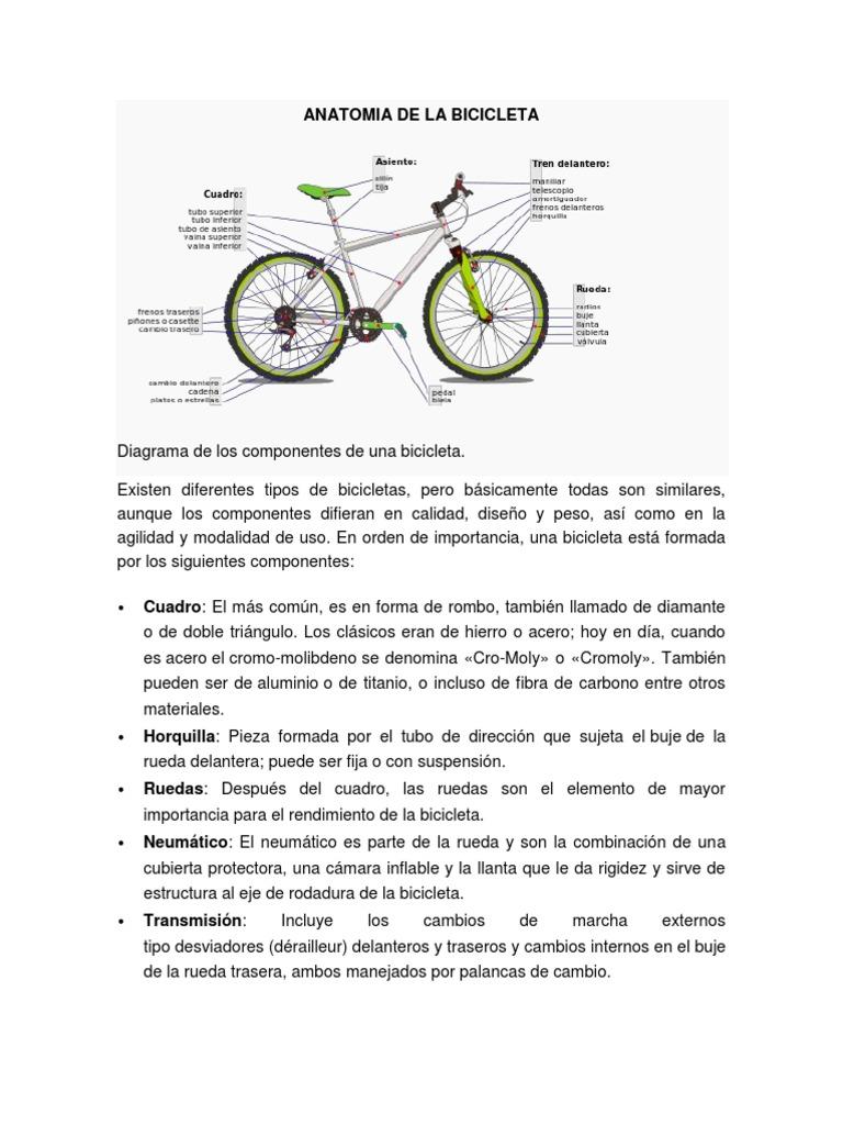 ANATOMIA DE LA BICICLETA.docx