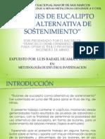 BULONES DE EUCALIPTO COMO ALTERNATIVA DE SOSTENIMIENTO.pptx