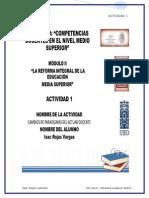 IRV Actividad 1 modulo 2.doc