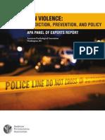Gun Violence Report