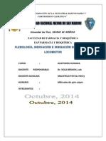 Monografia lista .docx