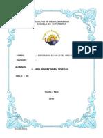 ESTIMULACION- MONOGRAFIA.docx