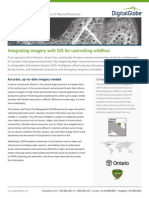 Integrating Imagery and Gis for Ffm