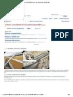 Criterios para el diseño de una cinta transportadora (página 2) - Monografias.pdf