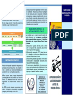 triptico-policia-nacional.pdf