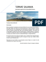 INFORME SAJAMA 2012 Ricardo González em português.pdf