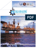 Techshore Inspection Services E Brochure