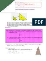relacao entre perimetro e areas.pdf