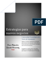 Apuntes Estrategias Para Nuevos Negocios.docx
