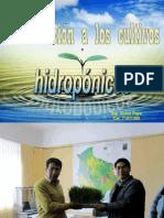 hidroponianft-121026124935-phpapp01.ppt