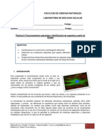 Guía de Laboratorio No. 6.pdf