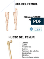 ANATOMIA DEL FEMUR.pptx