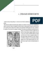 0012_Model_sist_mecanicos_Engranajes_evolvente-V1.pdf