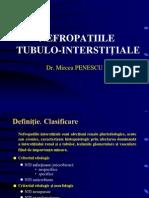 Nefropatii Tubulo Interstitiale