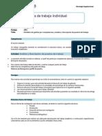Guía de Trabajo Individual.pdf