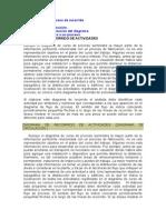 Diagrama de proceso de recorrido.doc