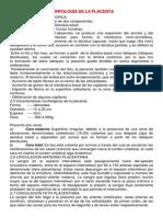 MORFOLOGÍA DE LA PLACENTA.docx