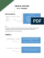 SIRURI DE CARCATERE.pdf