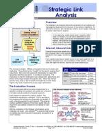 Strategic Link Analysis Lit Rev d