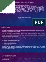 BIORREMEDIACIÓN DE SUELO CONTAMINADO CON HIDROCARBUROS USANDO LODOS.pptx